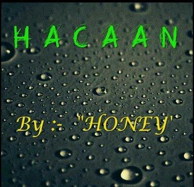 HACAAN by Honey