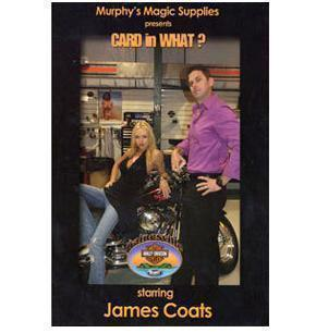 Card in What by James Coats