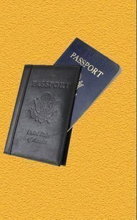 Passport by David Regal