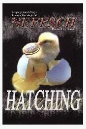 Hatching by Nefesch