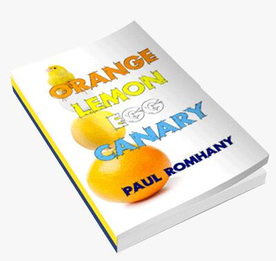 Orange Lemon Egg & Canary by Paul Romhany