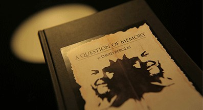Question Of Memory by David Berglas