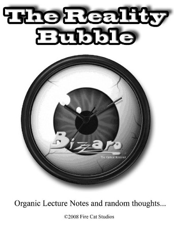 The Reality Bubble by Bizzaro
