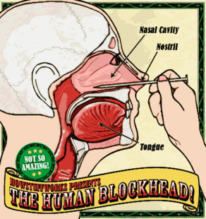 Nail in Nose by Human Blockhead