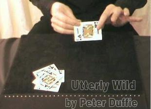 Utterly Wild by Peter Duffie