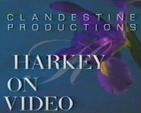Harkey On Video by David Harkey