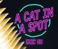 A Cat in a Spot by Eric Hu