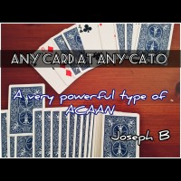 ANY CARD AT ANY CATO by Joseph B. (Instant Download)