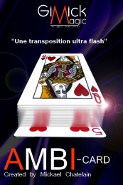 Ambi-Card by Mickael Chatelain