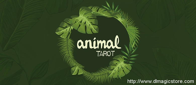 Animal Tarot by The Other Brothers (Instructions Only)