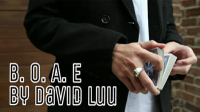Blink Of An Eye by David Luu video (Download)