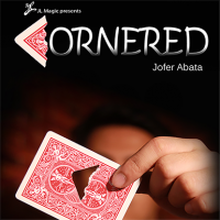 Cornered by Jofer Abata