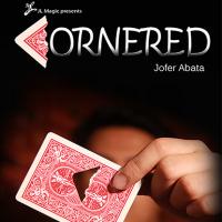 Cornered by Jofer Abata