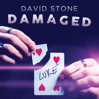 Damaged by David Stone (Instant Download)
