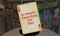 Dr. Schwartz's Fantasy Rising Card