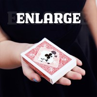 Enlarge by SansMinds Creative Lab
