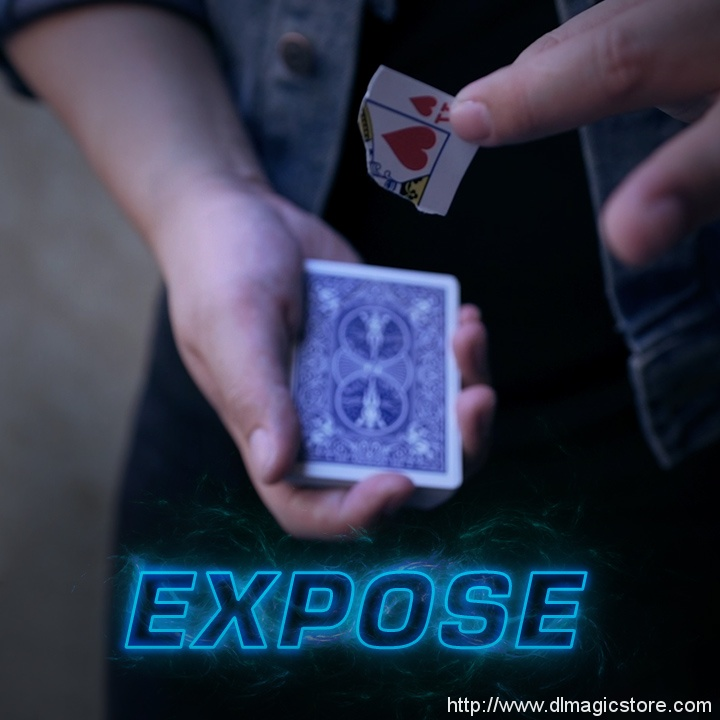 Expose by SansMinds Creative Lab