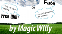 Fate or Free Will? by Magic Willy