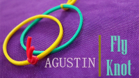Fly Knot by Agustin video (Download)