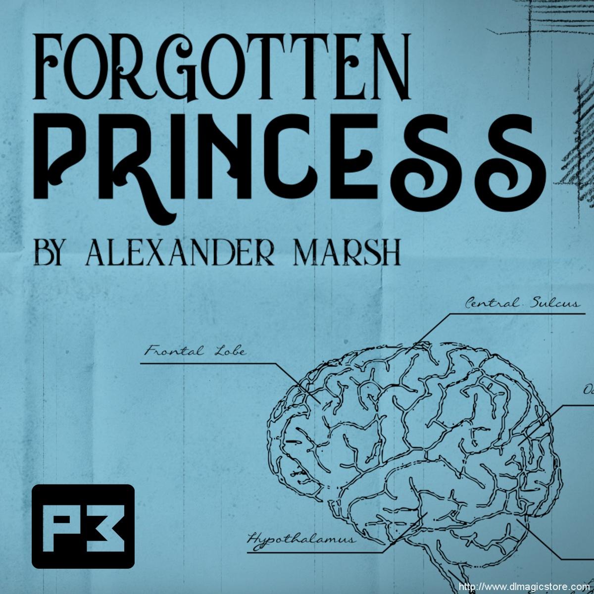 Forgotten Princess by Alexander Marsh