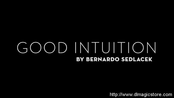 Good Intuition by Bernardo Sedlacek