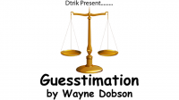Guesstimation by Wayne Dobson