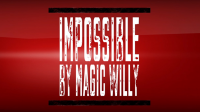IMPOSSIBLE TRICK by Magic Willy