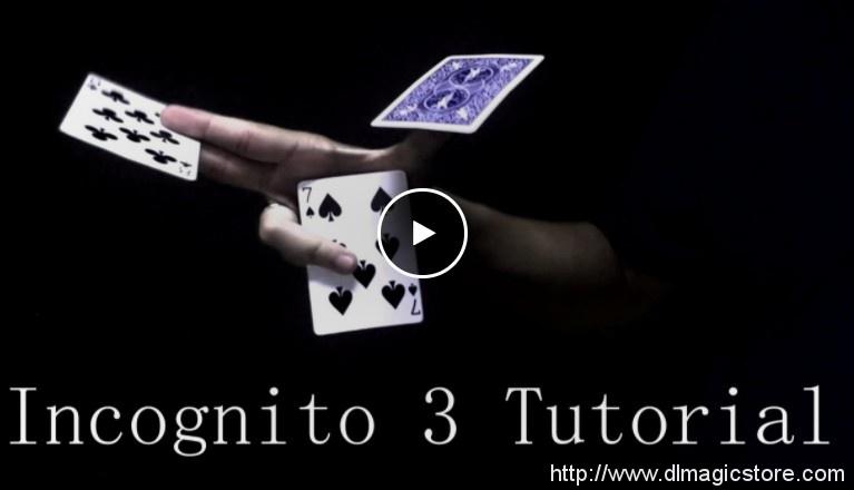 Incognito 3 by Alexandre Bazilio