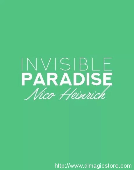 Invisible Paradise by Nico Heinrich