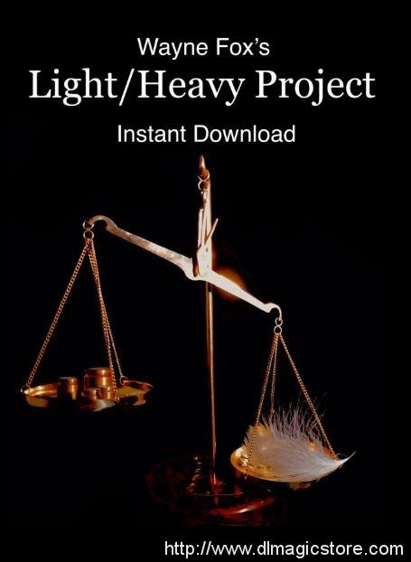 Light Heavy Project by Wayne Fox