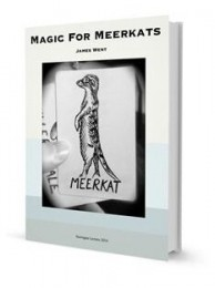 Magic For Meerkats By James Went