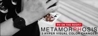 Metamorphosis by PH