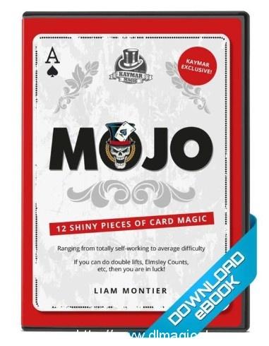 Mojo eBook by Liam Montier