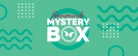 Mystery Box March 2020 by SansMinds Creative Lab