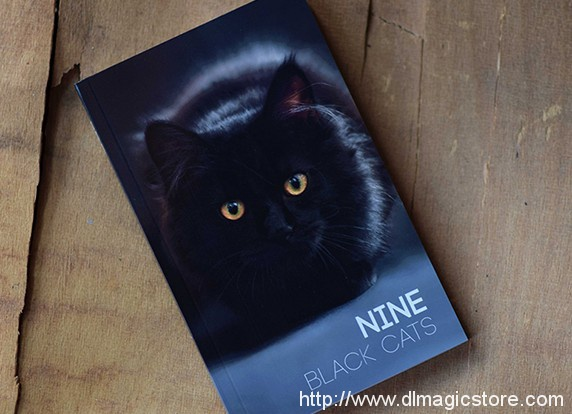 Nine Black Cats by Neemdog and Lorenzo