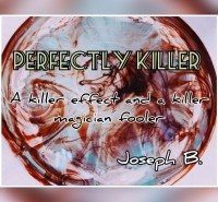 PERFECTLY KILLER by Joseph B. (Instant Download)