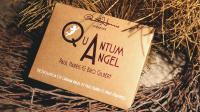 Quantum Angel by Paul Harris