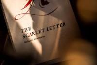 Scarlet by Josh Zandman
