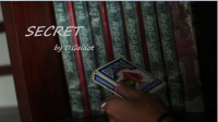 Secret by D.Galdot
