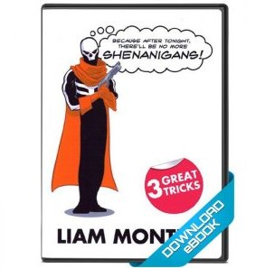 Shenanigans Magic download (ebook) by Liam Montier