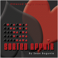 Sorted Affair 2016 by Sean Bogunia presented by Matt Johnson