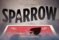 Sparrow By Tony D'Amico