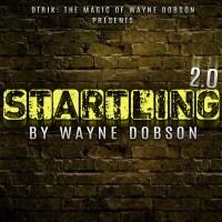 Startling 2.0 by Wayne Dobson