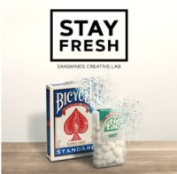 Stay Fresh by SansMinds Creative Lab