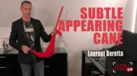 Subtle appearing cane by Laurent Beretta