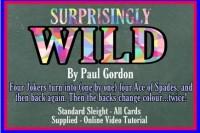 Surprisingly Wild by Paul Gordon