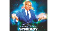 Synergy by Michael Vincent