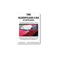 The Blindfolded Car by Devin Knight
