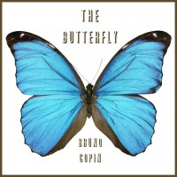 The Butterfly by Bruno Copin
