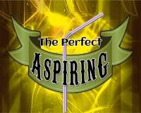 The Perfect Aspiring by Daniel Raley